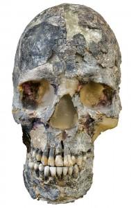 """homo sapiens"" aus Israel (Kopie)"