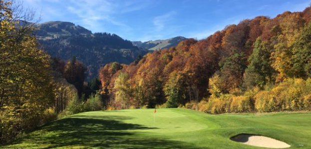 Blick auf tiefer gelegenes Grün und Bergkulisse