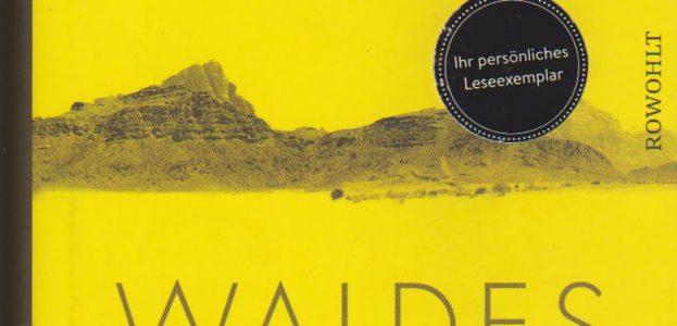 1804_waldes_dunkel