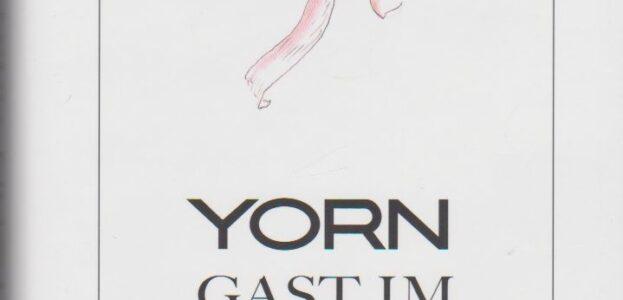 2006_yorn